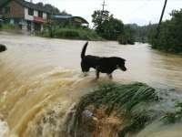 Мощное наводнение на юге Китая [ФОТО]