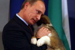 Владимир Путин и подаренная собака