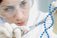 """Поврежденные ДНК отправляются для восстановления на специальной """"скорой помощи"""""""