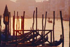 В Венеции нельзя кормить птиц и передвигаться на велосипедах