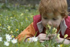 Распознать аутизм у ребенка можно по его способности различать запахи