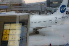 После авиакатастрофы в Египте был поднят вопрос безопасности аэропортов