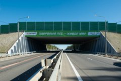 Инженерное сооружение через автомагистраль позволяет животным мигрировать в привычной для них среде обитания