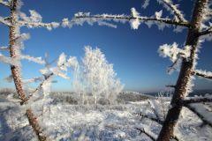 Синоптики прогнозируют сильный снег, метель и сход одиночных лавин