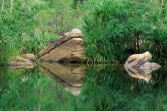 В водах рек и озер по всему миру найдены большие объемы искусственных подсластителей