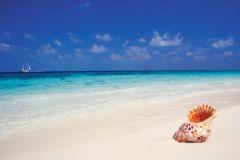 85% россиян сами выбирают, куда отправиться в отпуск