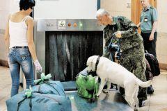 Маленькие размеры современных бомб усложняют работу правоохранительных органов