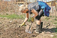Подготовка почвы – залог отличного урожая