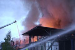 Лес горит на площади 118,5 тысячи гектаров