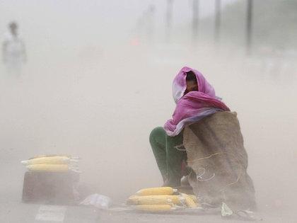 По данным метеорологов, температура не перестанет расти в ближайшие дни