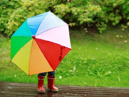Чтобы зонт прослужил вам как можно дольше, нужно обратить внимание не на этикетку, сейчас и на подделку можно прикрепить любую, а на конструкцию вещи, ручку, купол и, конечно, на то, из чего они сделаны