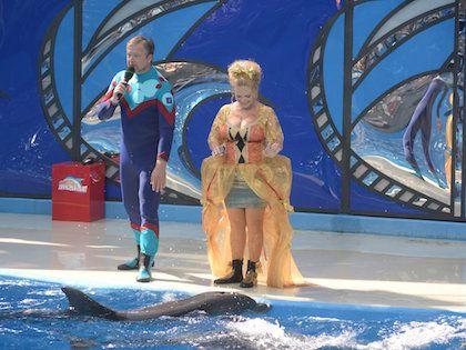 """""""Если вы падаете с дельфина, а на пути – бортик бассейна, то приятного мало"""""""