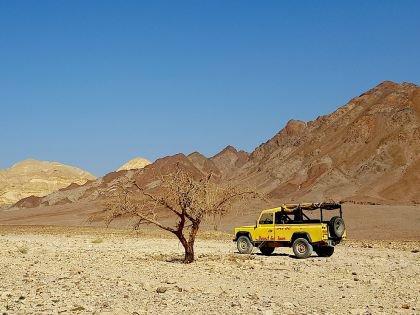 Джип, пустынная акация, горы - обычный пейзаж