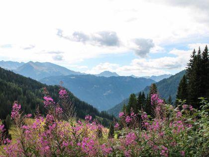 Тирольские Альпы летом