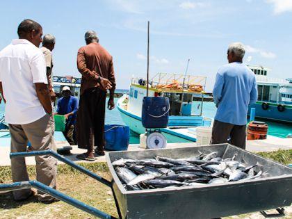 Рыболовство - основное занятие местных