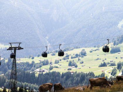Колокольчики на шеях альпийских коров создают музыку Альп