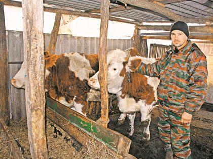 Роман Иванченко бросил Москву и вернулся в родную деревню