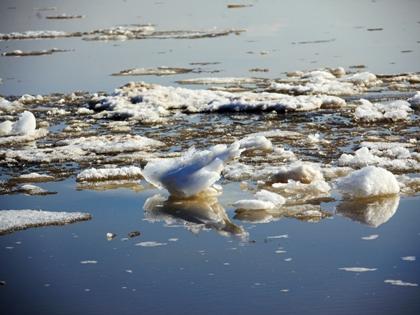 По данным спасателей, мужчина провалился под лед в 1,5 метрах от берега