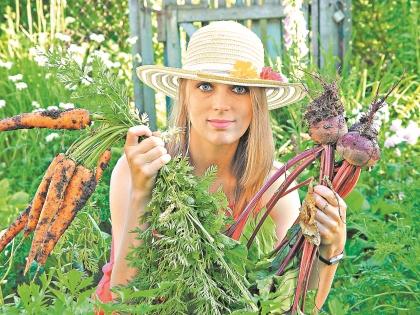 Кушать можно не только дары огорода, но и сорняки!