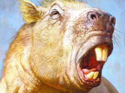 Возраст животного составляет не более 3 млн лет