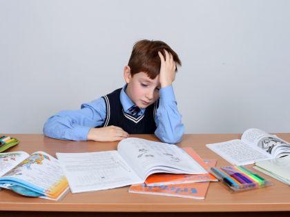 Школьник с учебниками