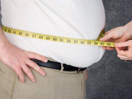 Ученые раскрыли механизм, влияющий на процесс формирования коричневого жира